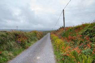 Stille-Bilder-Irland-6
